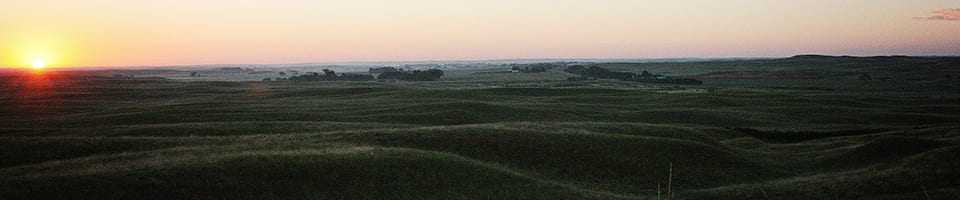 IMG_8058-landscape